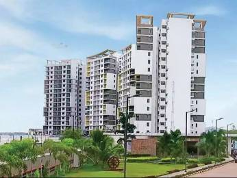 1325 sqft, 2 bhk Apartment in TATA Ariana Kalinga Nagar, Bhubaneswar at Rs. 15000