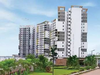676 sqft, 1 bhk Apartment in TATA Ariana Kalinga Nagar, Bhubaneswar at Rs. 10000