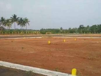 1500 sqft, Plot in Builder kalapati Avenue Kalapatti, Coimbatore at Rs. 8.6000 Lacs