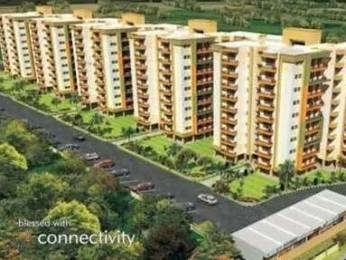 1800 sqft, 3 bhk Apartment in Reputed Vrindavan Garden Dhakoli, Zirakpur at Rs. 42.0000 Lacs