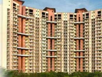 1839 sqft, 3 bhk Apartment in Amrapali Pan Oasis Sector 70, Noida at Rs. 85.0000 Lacs