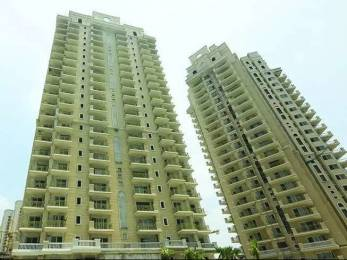 1195 sqft, 2 bhk Apartment in Ace Golfshire Sector 150, Noida at Rs. 57.9575 Lacs