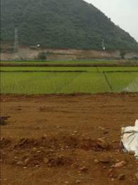 1125 sqft, Plot in Builder Project Ambapuram, Vijayawada at Rs. 9.0000 Lacs