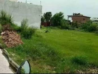 1575 sqft, Plot in Builder Dineshpur Rudrapur, Udham Singh Nagar at Rs. 8.5000 Lacs