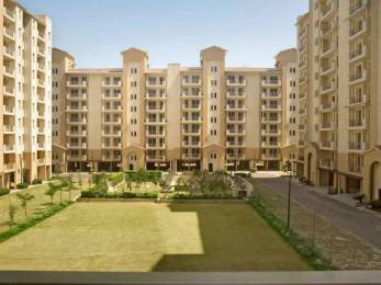 1450 sqft, 3 bhk Apartment in Emaar Palm Hills Sector 77, Gurgaon at Rs. 17000