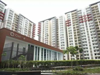 1620 sqft, 3 bhk Apartment in ABA Cherry County Techzone 4, Greater Noida at Rs. 76.0000 Lacs