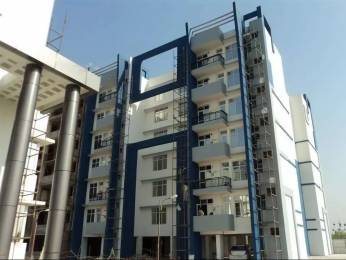 3600 sqft, 4 bhk Apartment in Sandwoods Spangle Condos Dhakoli, Zirakpur at Rs. 72.0000 Lacs