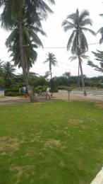 1800 sqft, Plot in Bhoomatha Amaravati Green City Modavalasa, Visakhapatnam at Rs. 15.0000 Lacs