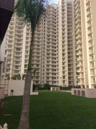 1890 sqft, 3 bhk Apartment in SS The Coralwood Sector 84, Gurgaon at Rs. 79.0000 Lacs
