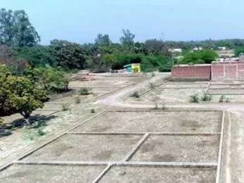 1000 sqft, Plot in Builder Project Bijnaur Road, Lucknow at Rs. 12.9900 Lacs