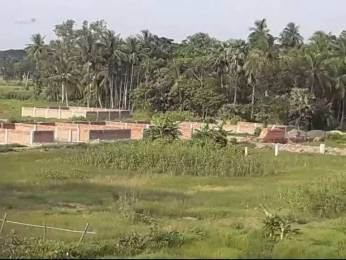 720 sqft, Plot in Builder Amtala Housing Complex Amtala, Kolkata at Rs. 2.5000 Lacs