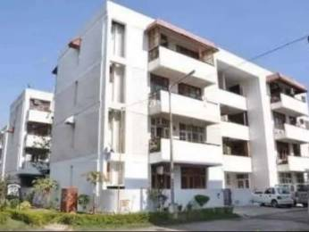800 sqft, 1 bhk Apartment in Builder Project Sector 51, Chandigarh at Rs. 8000
