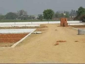 1000 sqft, Plot in Builder Royals colony Taramandal, Gorakhpur at Rs. 3.0000 Lacs