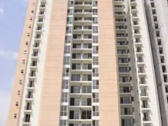 1430 sqft, 3 bhk Apartment in Jaypee Aman Sector 151, Noida at Rs. 55.0000 Lacs