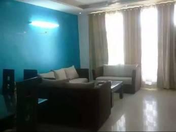 1150 sqft, 2 bhk Apartment in Builder ms enclave Dhakoli Zirakpur, Chandigarh at Rs. 11000