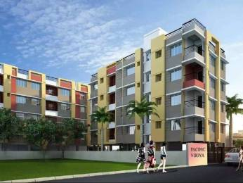 736 sqft, 2 bhk Apartment in Builder PACIFIC VIJOYA Boral, Kolkata at Rs. 23.1840 Lacs