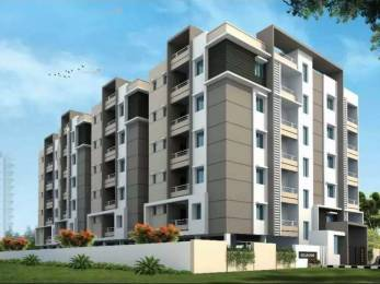 1000 sqft, 2 bhk Apartment in Builder orchid homes PMPalem, Visakhapatnam at Rs. 34.0000 Lacs