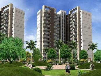 1975 sqft, 3 bhk Apartment in Spaze Privy Sector 72, Gurgaon at Rs. 1.3000 Cr