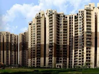 1040 sqft, 2 bhk Apartment in Logix Blossom County Sector 137, Noida at Rs. 45.2400 Lacs