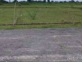 9000 sqft, Plot in Builder arise valvet Rohaniya, Varanasi at Rs. 12.0100 Lacs
