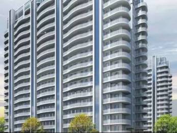 1998 sqft, 4 bhk Apartment in BPTP Terra Sector 37D, Gurgaon at Rs. 95.0000 Lacs