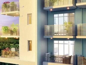 1269 sqft, 2 bhk Apartment in Godrej Summit Sector 104, Gurgaon at Rs. 71.0000 Lacs