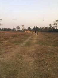 13230 sqft, Plot in Builder Project Dehradun Haridwar Road, Dehradun at Rs. 78.5200 Lacs
