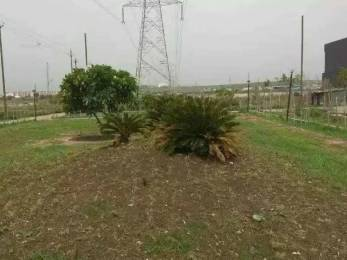 1000 sqft, Plot in Builder Project Rau, Indore at Rs. 20.8600 Lacs