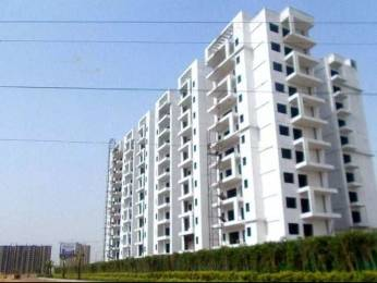 1300 sqft, 2 bhk Apartment in Shree Victoria Sector 70, Gurgaon at Rs. 78.0000 Lacs