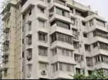1000 sqft, 3 bhk Apartment in Builder Project Seminary Hills, Nagpur at Rs. 18000