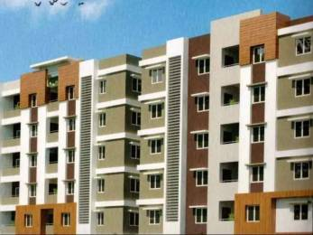 1080 sqft, 2 bhk Apartment in Builder Project Sujatha Nagar, Visakhapatnam at Rs. 39.0000 Lacs