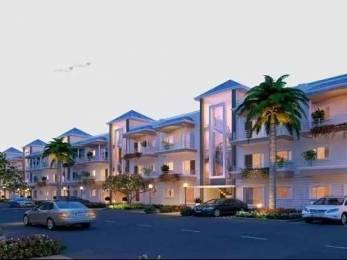 1350 sqft, 3 bhk Apartment in GBP Camellia Daun Majra, Mohali at Rs. 33.4046 Lacs