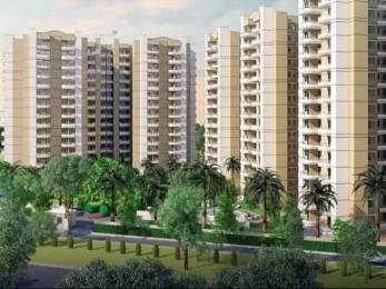 529 sqft, 1 bhk Apartment in Stellar MI Citihomes Omicron, Greater Noida at Rs. 6500