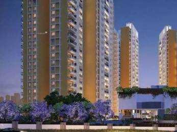 760 sqft, 1 bhk Apartment in Brigade Buena Vista Budigere, Bangalore at Rs. 36.0000 Lacs
