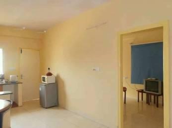 600 sqft, 1 bhk Apartment in Builder holiday apartment Bellandur, Bangalore at Rs. 12000
