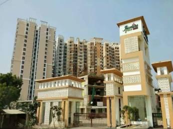 1095 sqft, 2 bhk Apartment in Savfab Jasmine Grove Shastri Nagar, Ghaziabad at Rs. 31.5000 Lacs