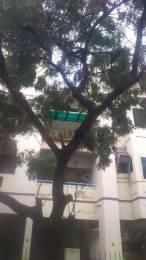 1550 sqft, 3 bhk Apartment in Builder Project Besant Nagar, Chennai at Rs. 33000