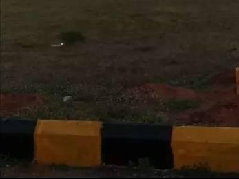 2250 sqft, Plot in Builder Bhrundavanam Turkayamjal X Roads, Hyderabad at Rs. 32.5000 Lacs