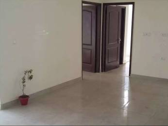 1254 sqft, 3 bhk Apartment in SDS NRI Residency Omega, Greater Noida at Rs. 12000