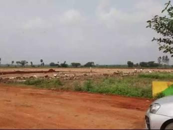 1800 sqft, Plot in Builder Project Nellore Jonnawada Narasimhakonda Road, Nellore at Rs. 5.5000 Lacs
