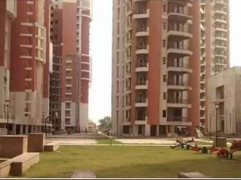 1750 sqft, 3 bhk Apartment in Omaxe NRI City Omega, Greater Noida at Rs. 65.0000 Lacs