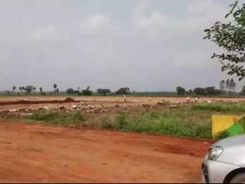 200 sqft, Plot in Builder Project Nellore Jonnawada Narasimhakonda Road, Nellore at Rs. 5.5000 Lacs
