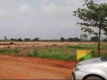 200 sqft, Plot in Builder nellore jonnawada Nellore Jonnawada Narasimhakonda Road, Nellore at Rs. 5.5000 Lacs