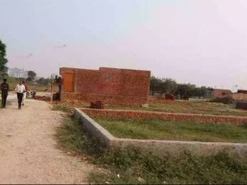 1170 sqft, Plot in Builder Project Wazirabad, Delhi at Rs. 4.5500 Lacs