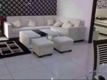 1560 sqft, 4 bhk Apartment in Builder trishla NEARBY PEERMUCHALLA SECTOR 20 PANCHKULA, Chandigarh at Rs. 16000
