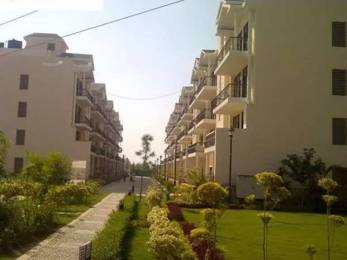 1760 sqft, 3 bhk BuilderFloor in Omaxe Royal Residency Dad Village, Ludhiana at Rs. 20000