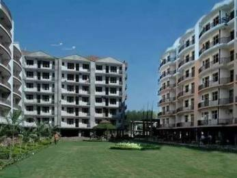 1392 sqft, 2 bhk Apartment in Trishla Plus Homes Sector 20, Panchkula at Rs. 31.5000 Lacs