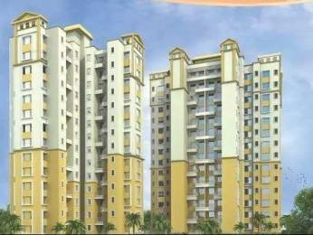 578 sqft, 1 bhk Apartment in DMK Infrastructure Stella Moshi, Pune at Rs. 35.5100 Lacs