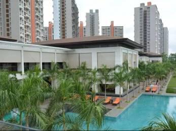 675 sqft, 1 bhk Apartment in Lodha Belmondo Gahunje, Pune at Rs. 49.0000 Lacs