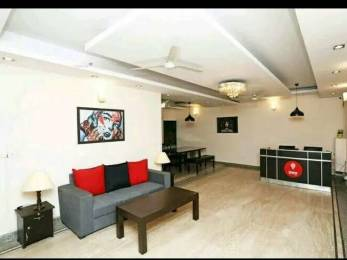 1850 sqft, 3 bhk BuilderFloor in Greater Kailash Executive Floor Greater Kailash, Delhi at Rs. 66000